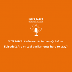 INTER PARES Parliaments in Partnership – Episode 2 Are virtual parliaments here to stay?